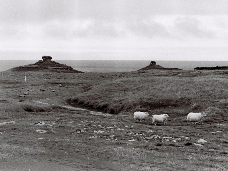 Islande par Djarwood