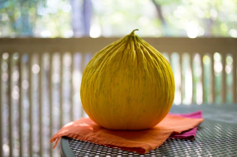 Annvie's - confiture melon d'eau et gingembre