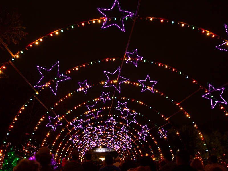 Annvie's - Trail of Lights